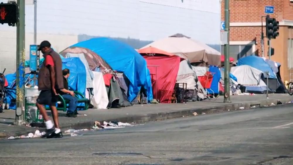 'Rats Have Taken Over the City': Los Angeles Homeless Crisis Reaches Epidemic Levels