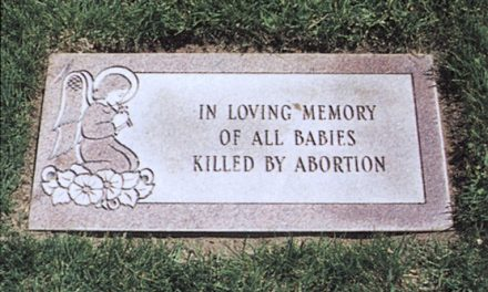2,411 Aborted Babies Abortionist Hoarded Will be Buried Wednesday, Finally Given Proper Burial