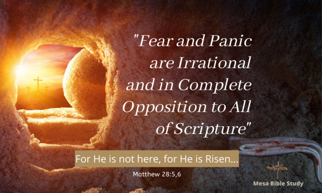 Fear and Panic are Irrational and In Complete Opposition to the Christian Life